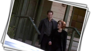 [Scully] Tennessee. Serpenti. Grazie Mulder, come vivrei senza di te.