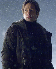 Mulder in I Want to Believe