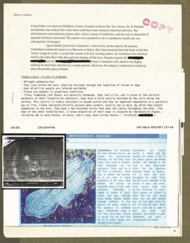 The X-Files: The Official Archives #5